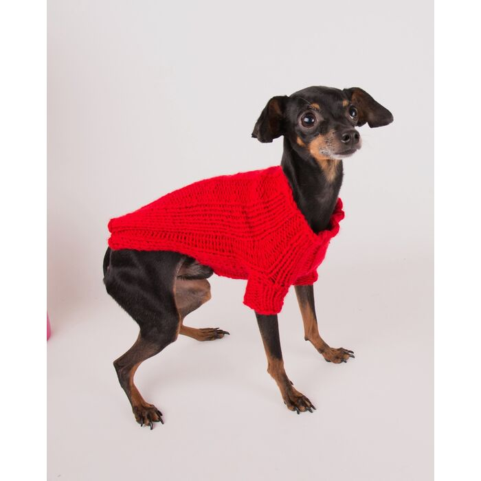 Modèle animaux - Pull dog Ella